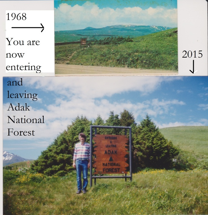 Adak - National Forest