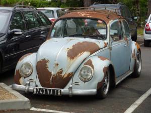 rusty-Beetle-300x225